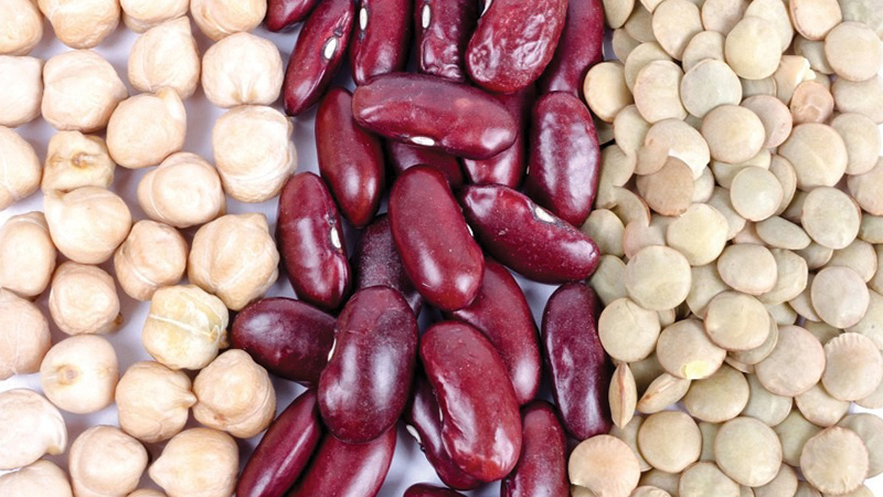 Lentils, Beans, Pulses & Grains